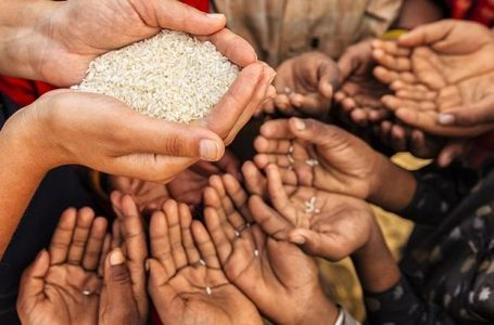The Current Status of Food Security in India