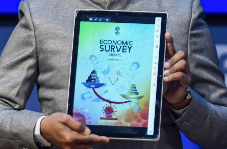Highlights of the Economic Survey 2020-21