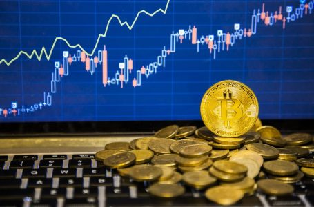 Despite the volatile nature of cryptocurrency, the market seems to be rising everyday
