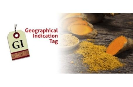 What are GI tags?