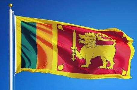 Sri Lanka's organic revolution risks its tea industry